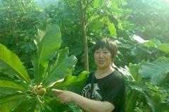 李土青:瑶胞致富的引路人