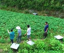 短視頻|扶貧19年 足跡踏遍了平江773個村